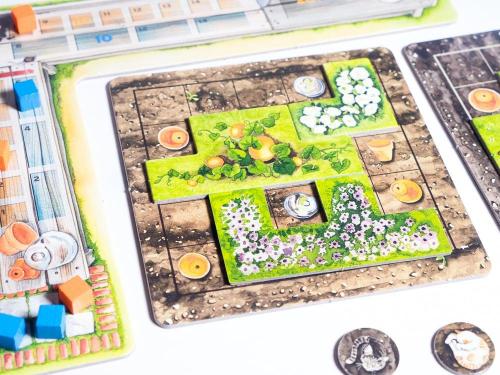 Lähikuva puutarhasta
