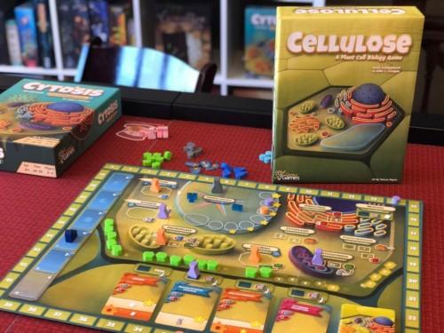 Cellulose-pelin prototyyppi