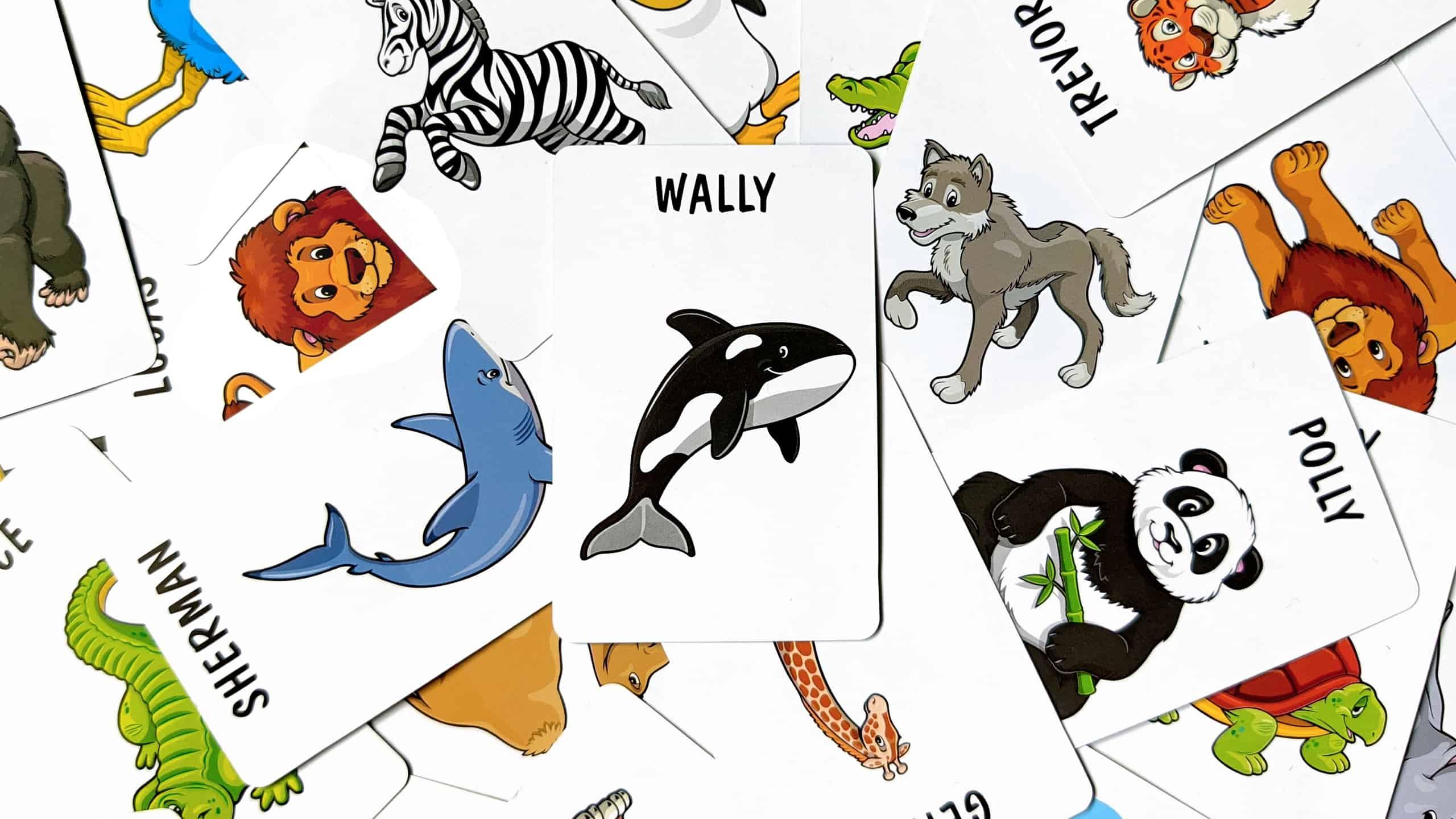 Sequence Juniorin eläinkortteja